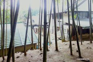 竹やぶから子どもの家をのぞむ