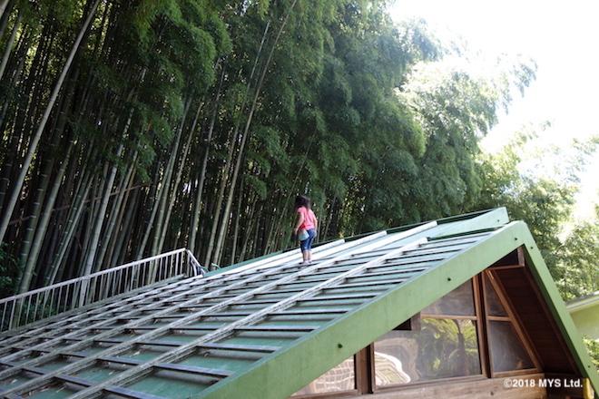 アートハウスの屋根に登る子