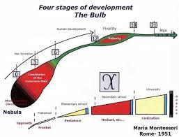 発達の四段階のチャート