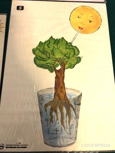 植物が地面から水を吸い上げ、それを太陽が吸っているイメージで「蒸散」を表している絵