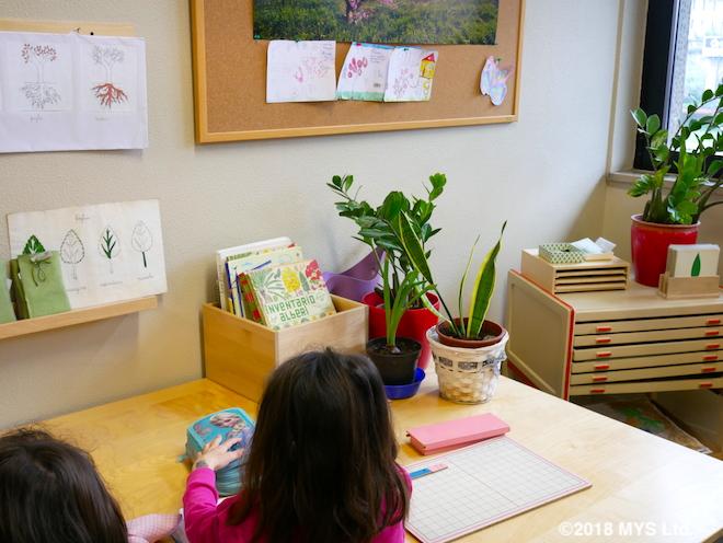 植物について学ぶ場所