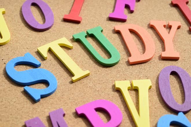 カラフルな木製アルファベットを並べたSTUDYの文字