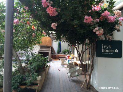 ivy's house外観