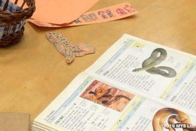 Taipei Utopia Montessori Elementary School で生徒が図鑑の蛇を写した絵